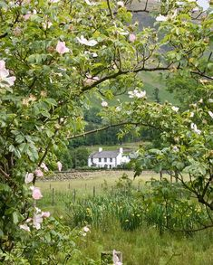 Rose Cottage, Lake District,Cumbria, England-definitel on bucket list! Lake District, Cumbria, Country Life, Country Living, Country Estate, Country Roads, Beautiful Homes, Beautiful Places, Beautiful Farm