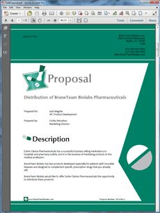 Product Sales Proposal Template Pinmessias Tim Beta Sdv On Remédios  Pinterest