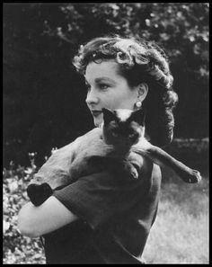Vivian Leigh loved Siamese cats.  She has more than a dozen in her various homes.  Poo Jones, her Siamese, was with her when she passed away.