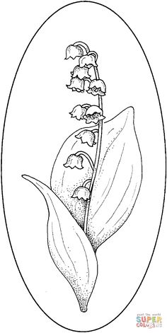 Lily Coloring Pages | Lily Of The Valley 4 Coloring Online