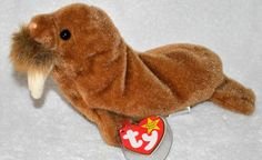 """TY Beanie Baby #Paul #Walrus Original Mint Tag Protected Retired 1999 8"""" #Ty"""