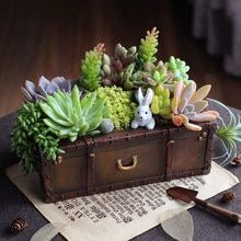 Cheap flower pot, Buy Quality bonsai planter directly from China decorative garden planters Suppliers: Vintage Resin Suitcase Flowerpot Succulent Plants Planter Luggage Flower Pot Storage Box Home Garden Decoration Bonsai Planter Succulents In Containers, Cacti And Succulents, Planting Succulents, Planting Flowers, Cheap Plant Pots, Cheap Plants, Bonsai Plante, Succulent Bonsai, Resin Planters