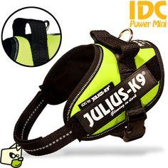 JULIUS-K9 IDC Power harnais pour chien