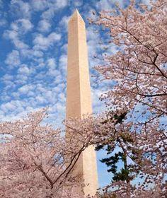Washington Monument - Washington, D.C.