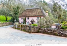 A typical Devon pink cottage with traditional thatched roof in Cockington Village Church, Torquay, Devon, UK - Stock Image