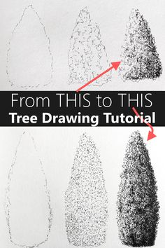 Pencil Drawings For Beginners, Drawing Lessons For Kids, Realistic Drawings, Easy Drawings, Trees Drawing Tutorial, Sketches Tutorial, Art Painting Gallery, Painting Tips, Tree Sketches