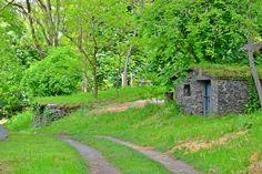Odkryj słowacki Hobbiton i skarby, które można znaleźć w tutejszych piwniczkach! Hobbit, Country Roads, The Hobbit