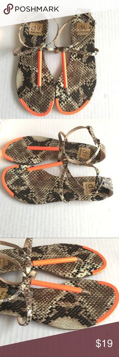 Dolce vita archer sandals Dolce vita archer sandals in snake. Some areas where snake skin has faded (pictured), not noticeable when wearing. Dolce Vita Shoes Sandals