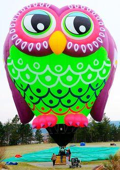 Flying Balloon, Love Balloon, Air Balloon Rides, Hot Air Balloon, Albuquerque Balloon Festival, Air Balloon Festival, Owl Balloons, Helium Balloons, Sky Ride
