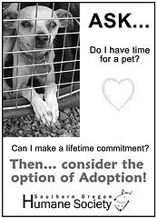 time for a pet?  www.sohumane.org