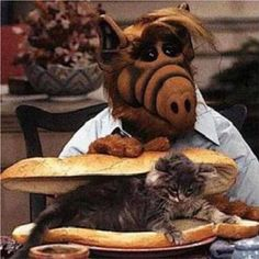 Alf - alien -liked to eat cats! The cats name was lucky. 90s Childhood, My Childhood Memories, Alf Tv Series, Kitsch, Best 90s Cartoons, Mejores Series Tv, Cartoon Toys, Saturday Morning Cartoons, Old Tv Shows
