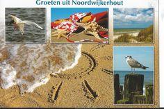 noordwijkerhout beach