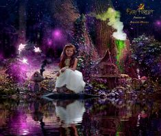 Fairy Forest series