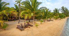 beach-belize.jpg (627×331)