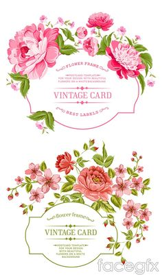Hand-painted flowers border vector