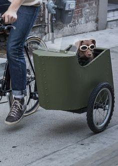 Make a Bicycle Sidecar for your Dog!