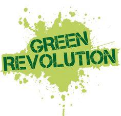 9 Piante che resistono a tutto | Fito Green Revolution, Bonsai, Decoration, Saving Money, Xmas, Vegetable Garden, Spring, Green, Frida Kahlo