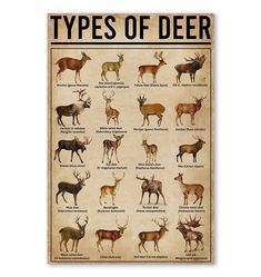 Printed and shipped from San Francisco, CA United States. Edge-to-edge print with no borders. Printed on 300 GSM paper. Netflix Codes, Hunter Gatherer, Mule Deer, Gsm Paper, Bow Hunting, Anthropology, Infographics, Art Work, Fishing