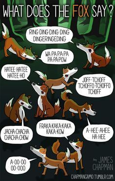 WHAT DOES THE FOX SAY? It finally happened. I caved into peer pressure and drew a bunch of foxes Sorry it took so long. I hope I& not too late to the meme party. (In case you were living inside a rock under another rock, here is some context ) James Chapman, Meme Party, Internet Ads, Buzzfeed Funny, Learn Another Language, What Is Digital, Peer Pressure, Digital Marketing Strategy, 1