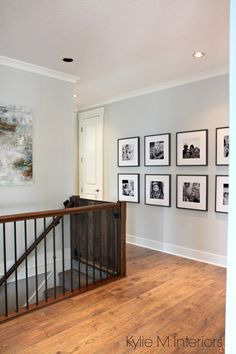 "BENJAMIN MOORE ""GRAY OWL"" 