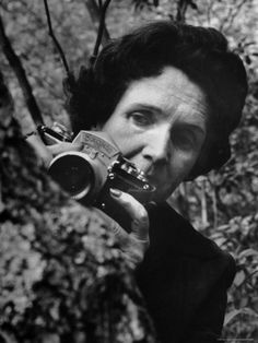 Biologist/Author Rachel Carson Holding Her German Kine Exakta Camera in the Woods Near Her Home