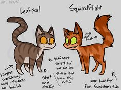 Leafpool the kittypet and squirrelflight the warrior Warrior Cat Memes, Warrior Cats Books, Warrior Cats Fan Art, Serval Cats, Herding Cats, Cat Plants, Love Warriors, Angry Cat, Cats For Sale