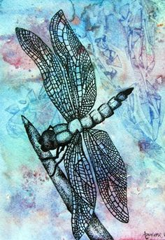 Pen and Ink Stippled Insect on Watercolor Ground - Conway High School Art Project