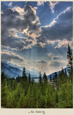 Along the Bow River Parkway, Banff National Park, Canada--Photographed by Ken Kaminesky