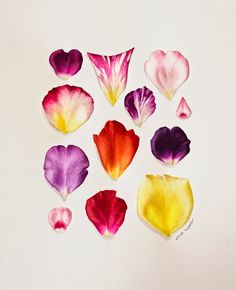 Eunike Nugroho: Rose Petals: Playing with New Colours