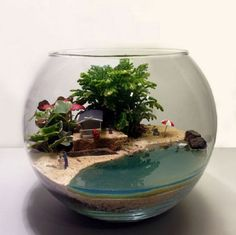 The Most Beautiful Terrarium Ideas – Yıldız Peltek Uncu - All For Herbs And Plants Terrarium Scene, Air Plant Terrarium, Glass Terrarium, Succulent Terrarium, Succulents Garden, Terrarium Ideas, Terrarium Decorations, Glass Cactus, Terrarium Wedding