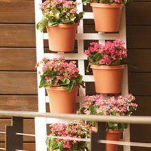 Make a Leaning Trellis Garden