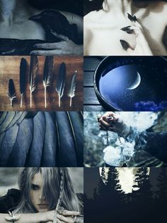 "kinstethic: "" Bird Fae aesthetic """