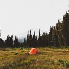 Photo by our buddy Camping Stove, Camping Life, Outdoor Camping, Outdoor Gear, Tactical Gear, Wilderness, Tent, Stoves, Mountains