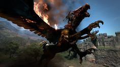The game Dragon's Dogma begins with a dragon attacking villages and cities and your mission as a player revolves around the mission of tracking down and destroying a mysterious dragon. Description from pinoytutorial.com. I searched for this on bing.com/images