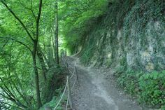 Wandelroute Groene wissel Houthem St.Gerlach 15km. Wandelpad langs de Geul.