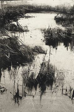 Landscapes – tonal | Wendy Orville