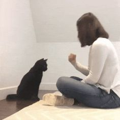 Cat performs secret handshake with owner Cute Cats, Funny Cats, Funny Animals, Cute Animals, Best Funny Pictures, Cute Pictures, Secret Handshake, Funny Comments, Daily Funny