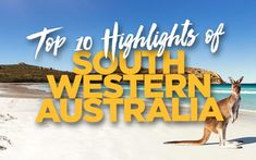 What are the top best things to do in South Western Australia & Perth? See our must see attractions, highlights & hidden gems for first time visitors.