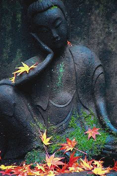 Buddha-ful Fall by Guy Gene on Flickr.Via Flickr: Park in Tokyo
