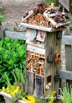 Creative #insect #hotel made from scraps of wood and hollow bamboo stalks. To top it off, it has a succulent roof.  I love this!