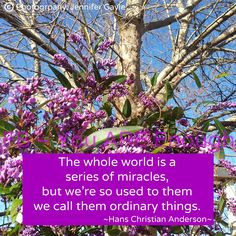 """The whole world is a series of miracles, but we're so used to them we call them ordinary things."" -- Hans Christian Andersen"