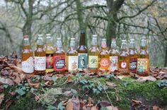 Mixed Westcountry Ciders - 12 Pack