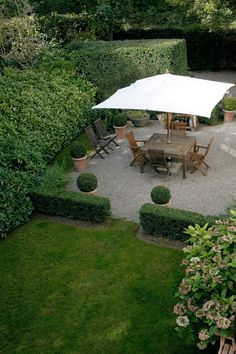 "I love a very low wall of privet hedge at the outer edge of the patio would serve as a ""room divider""."