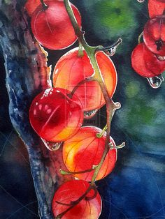 Red currant by Takir - watercolor painting Watercolor Fruit, Fruit Painting, Watercolor Landscape, Watercolor And Ink, Watercolour Painting, Watercolor Flowers, Watercolors, Guache, Wow Art
