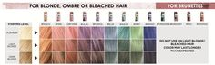 Image result for loreal colorista