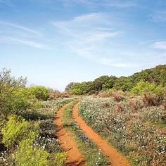 2. Take in the View - 16 Adventures in Texas' Hidden Hill Country - Southern Living