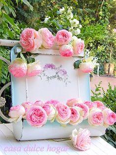 with pierre de ronsard roses