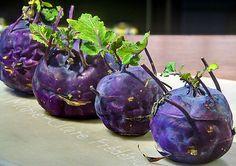 chou rave #violet, recette de chou rave farci au porc, sauce crème et persil Ni Cru Ni Cuit, Chou Rave, Sauce Creme, Celerie Rave, Saveur, Eggplant, Vegetables, Eat, Food