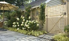 Our award winning design features climbing roses, limelight hydrangeas, and Japanese forest grass surrounding a bluestone terrace - more at www.WestoverLD.com
