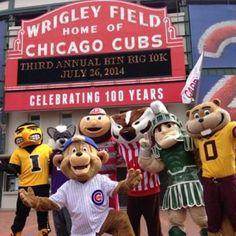 Stopped by @cubs to see Clark! #BIG10K #Padgram